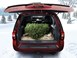 Christmas_Cargo_Tree_SUV_15 BY WEATHERTECH