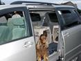2009 Toyota Sienna Side Window Deflectors