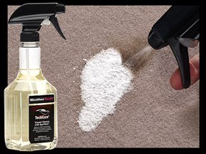 TechCare<sup>®</sup> Carpet Cleaner with SpotTech