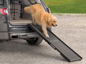 PetSTEP - Foldable Pet Ramp