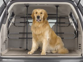 Pet Barrier for Your Vehicle