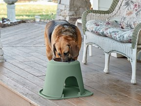 Dog Cat Feeder PetComfort Double High Feeding System w// XL Mat Blue