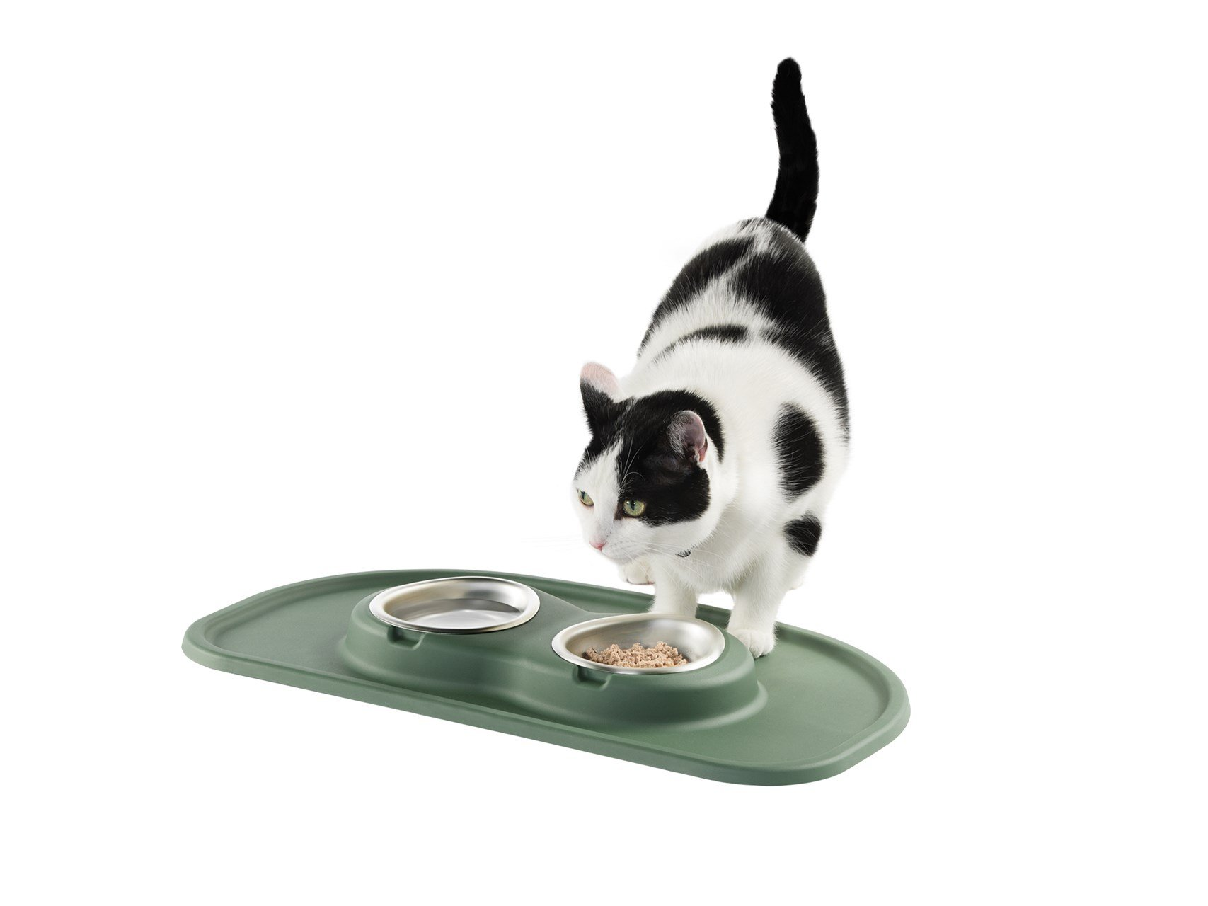 Cat eating from a Hunter Green PetComfort Feeding System - small.