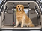 1_Pet_Barrier_Scout_Trees3 BY WEATHERTECH