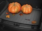 Pumpkins on CargoLiner BY WEATHERTECH