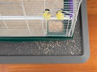 bird cage on an All Purpose Mat BY WEATHERTECH