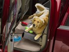 dog with dog toys on a Seat Protector BY WEATHERTECH
