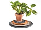 different size coasters underneath a potted plant BY WEATHERTECH