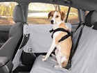 Dog secured in the WeatherTech Pet Harness. BY WEATHERTECH
