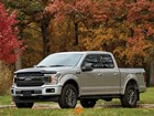 F150_Fall_Truck_SideWindow_Stone_Bug_IMG_9_3 BY WEATHERTECH