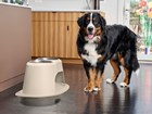 Dog standing next to a double high feeding system. BY WEATHERTECH