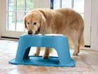 Dog eating out of blue double high feeding system. BY WEATHERTECH