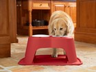 Dog eating out of red double high feeding system. BY WEATHERTECH