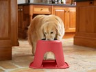 Golden Retriever eating from red feeding system.  BY WEATHERTECH