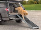 Golden Retriever walking down dog ramp out of SUV. BY WEATHERTECH
