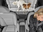 Pet Partition installed in car with dog and driver BY WEATHERTECH