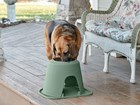 Porch_Senior_Dog_Large_Single_Tall BY WEATHERTECH