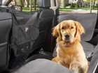 dog sitting in front of door protector BY WEATHERTECH