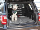 Dog in a vehicle with a Pet Barrier installed. BY WEATHERTECH