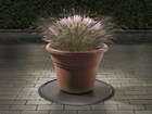 XMAS_FLOWER_POT_2_cocoa BY WEATHERTECH