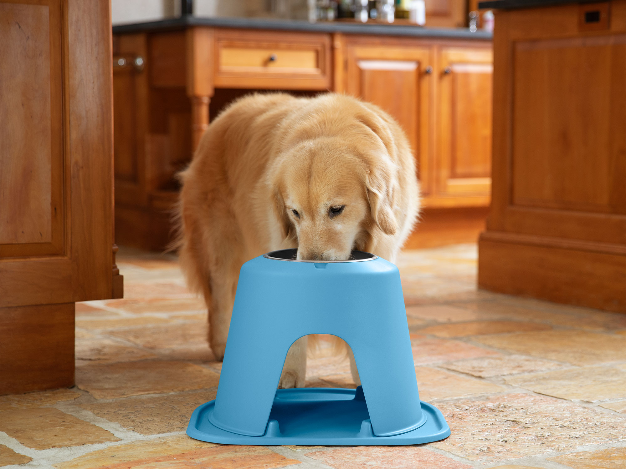 WeatherTech elevated feeding station and dog bowl are perfect as an extra food or water point indoors and outdoors.