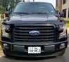 2017 Ford F-150 Hood Protector