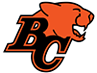 Photograph of BC Lions product color
