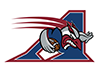 Photograph of Montreal Alouettes product color