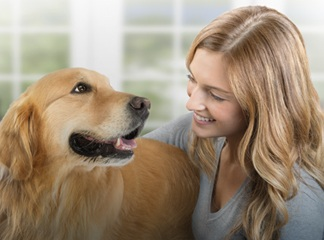 Golden Retriever smiling at young woman while being held affectionately.