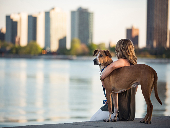 Dog_Women_City_Article