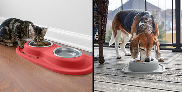 Cat and dog eating out of double and single low pet feeding systems