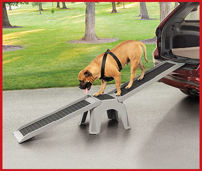 Photograph of a dog walking on an Easy Ramp that is attached to the trunk of an SUV to help them get out of the car easily.