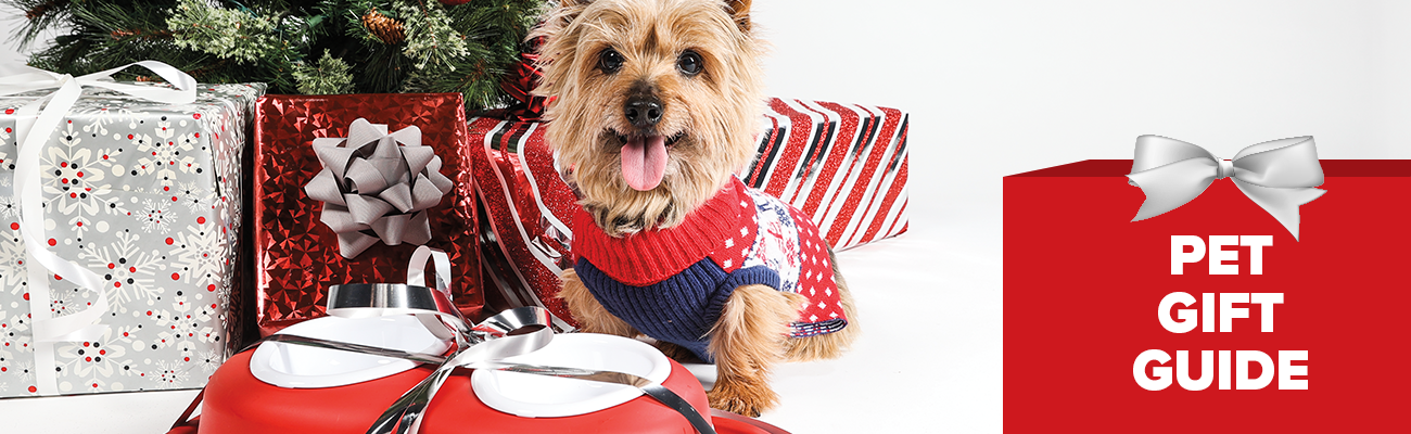Photograph of a yorkie in a christmas sweater with a Pet feding System gift wrapped in front of him with christmas decor in the back featuring text that says Pet Gift Guide