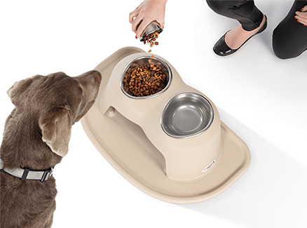 A dog waits to eat as his owner fills a PetComfort bowl in the PetComfort Feeding System.