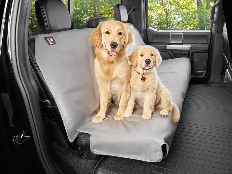 Two golden retrievers on a WeatherTech Seat Protector.