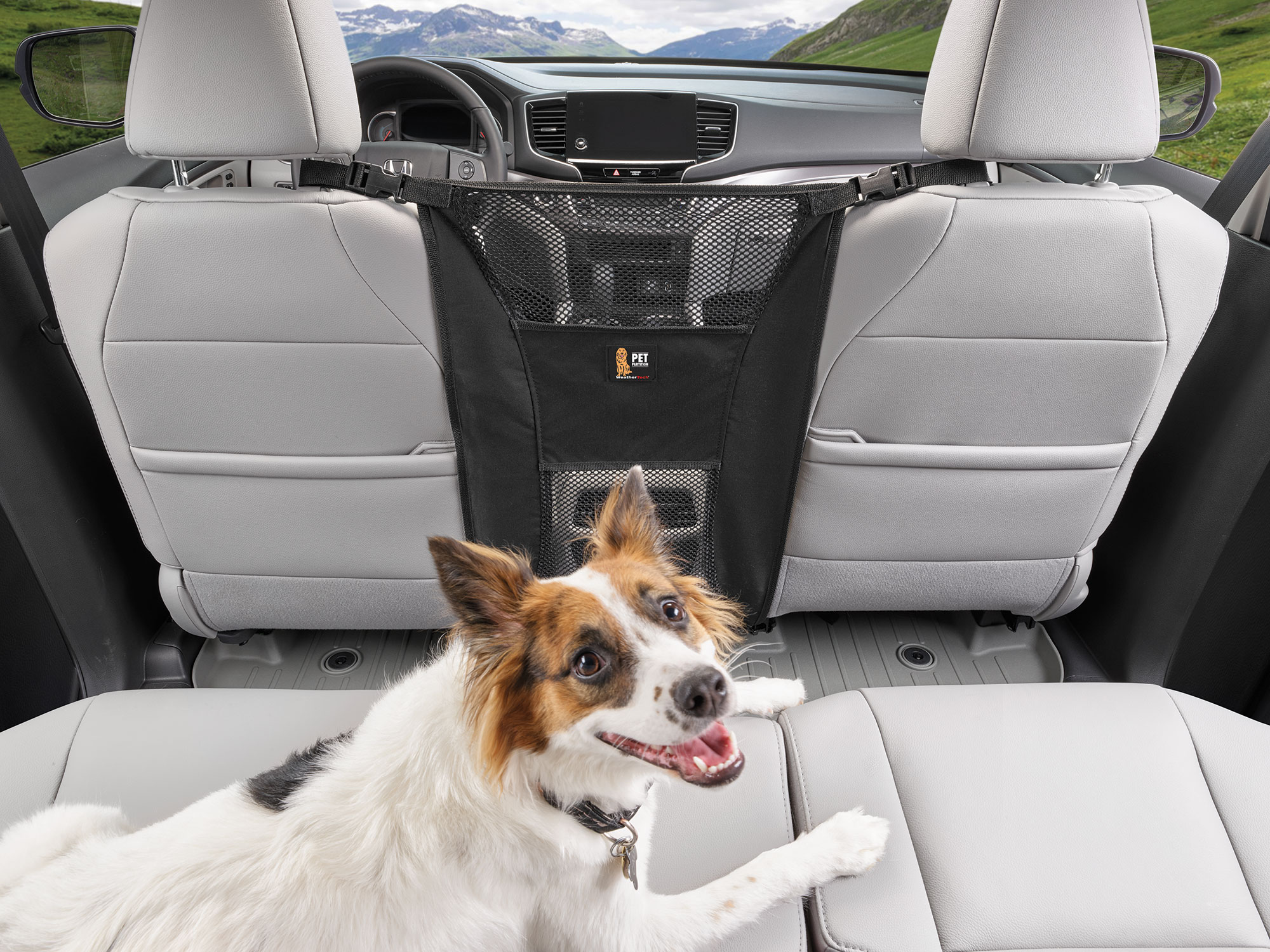 Pet Partition installed in an SUV, with a dog secured in the back-seat. This mesh dog barrier is perfect for cars, trucks or SUVs.