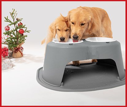 Photograph of two golden retrievers drinking out of a grey Pet Feeding System with christmas decorations in the background.