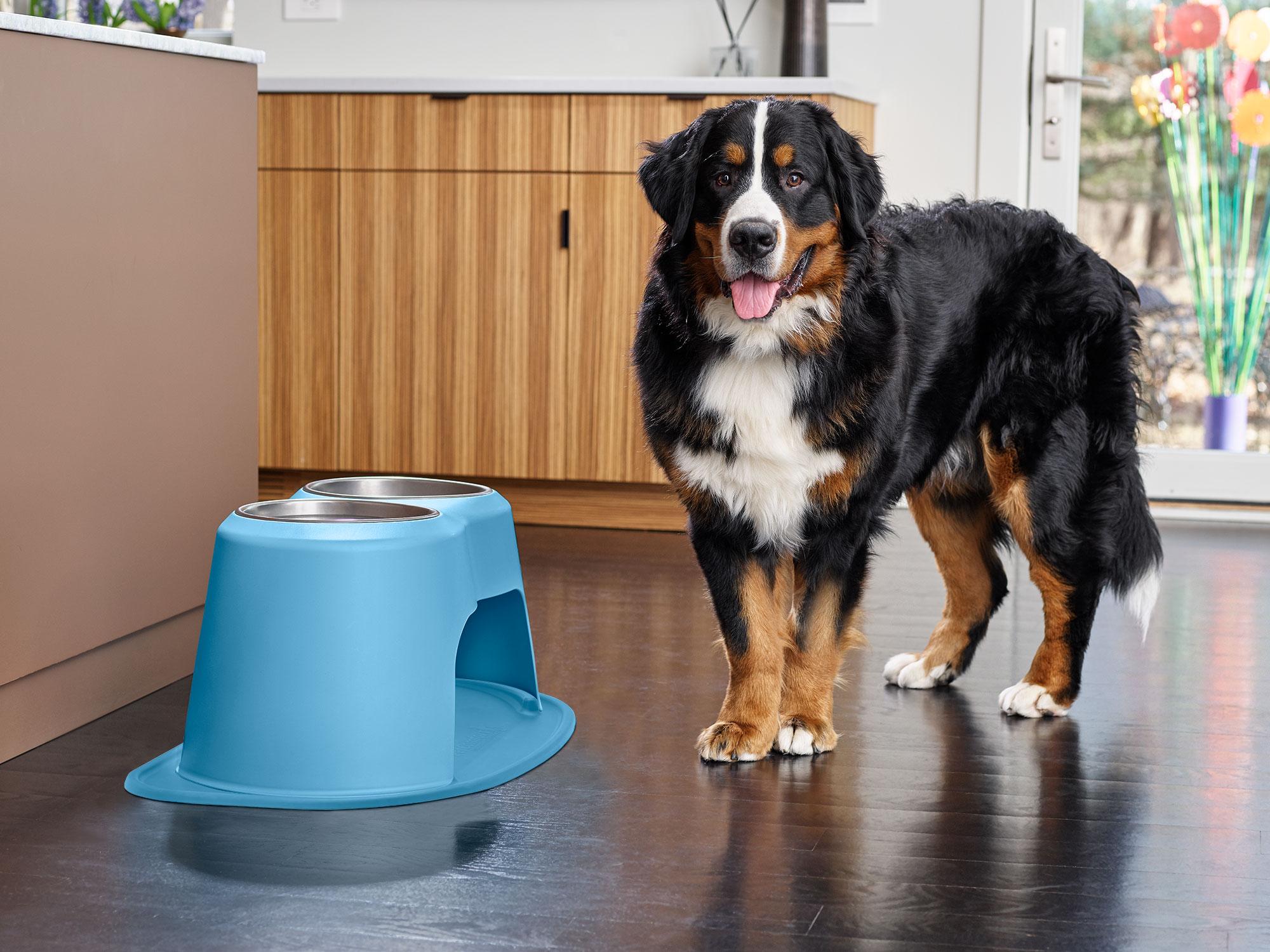 Dog Cat Feeder Light Brown PetComfort Double High Feeding System w// XL Mat