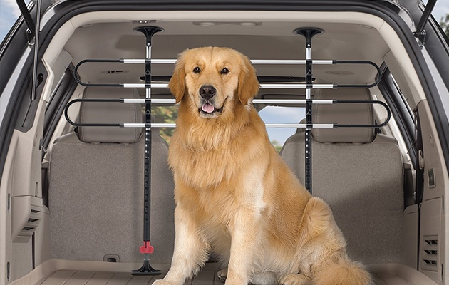 WeatherTech Pet Barrier and Golden Retriever dog in back of SUV