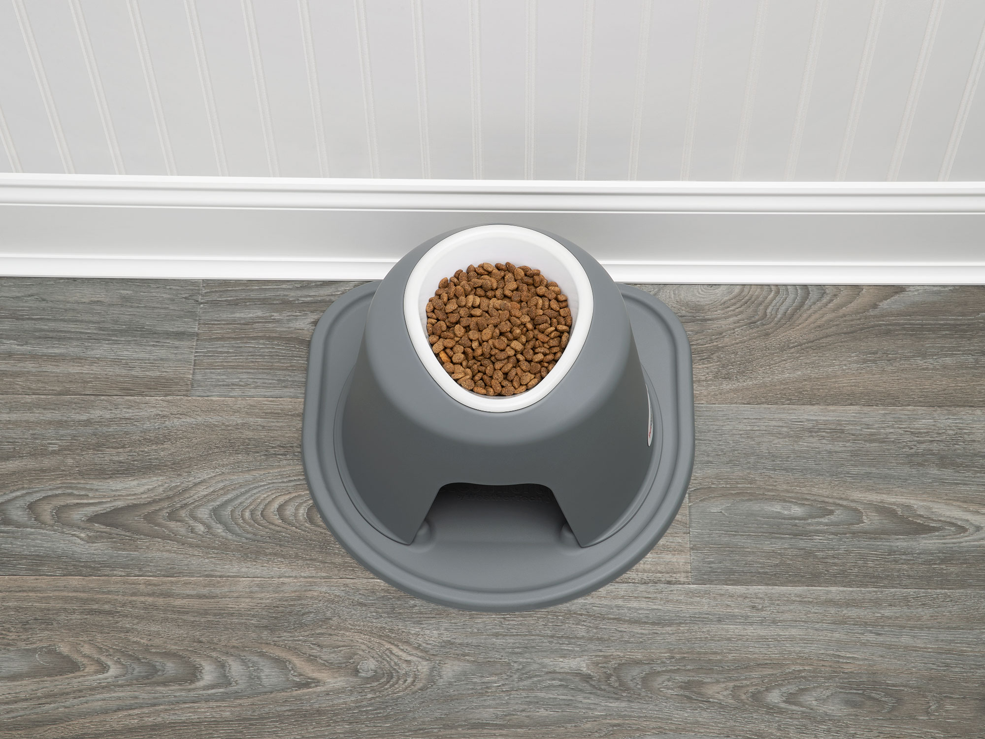Single high dog feeding system with a plastic bowl filled with food.