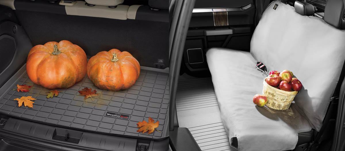 Pumpkin_Apples_wide