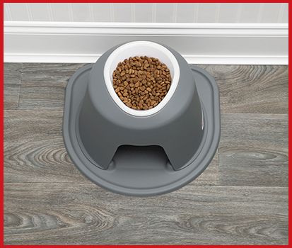 Photograph of a single high feeding system with dog food in it in a home.