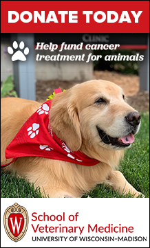 Donate Today. Help fund cancer treatment for animals. School of Veterinary Medicine. University of Wisconsin-Madison