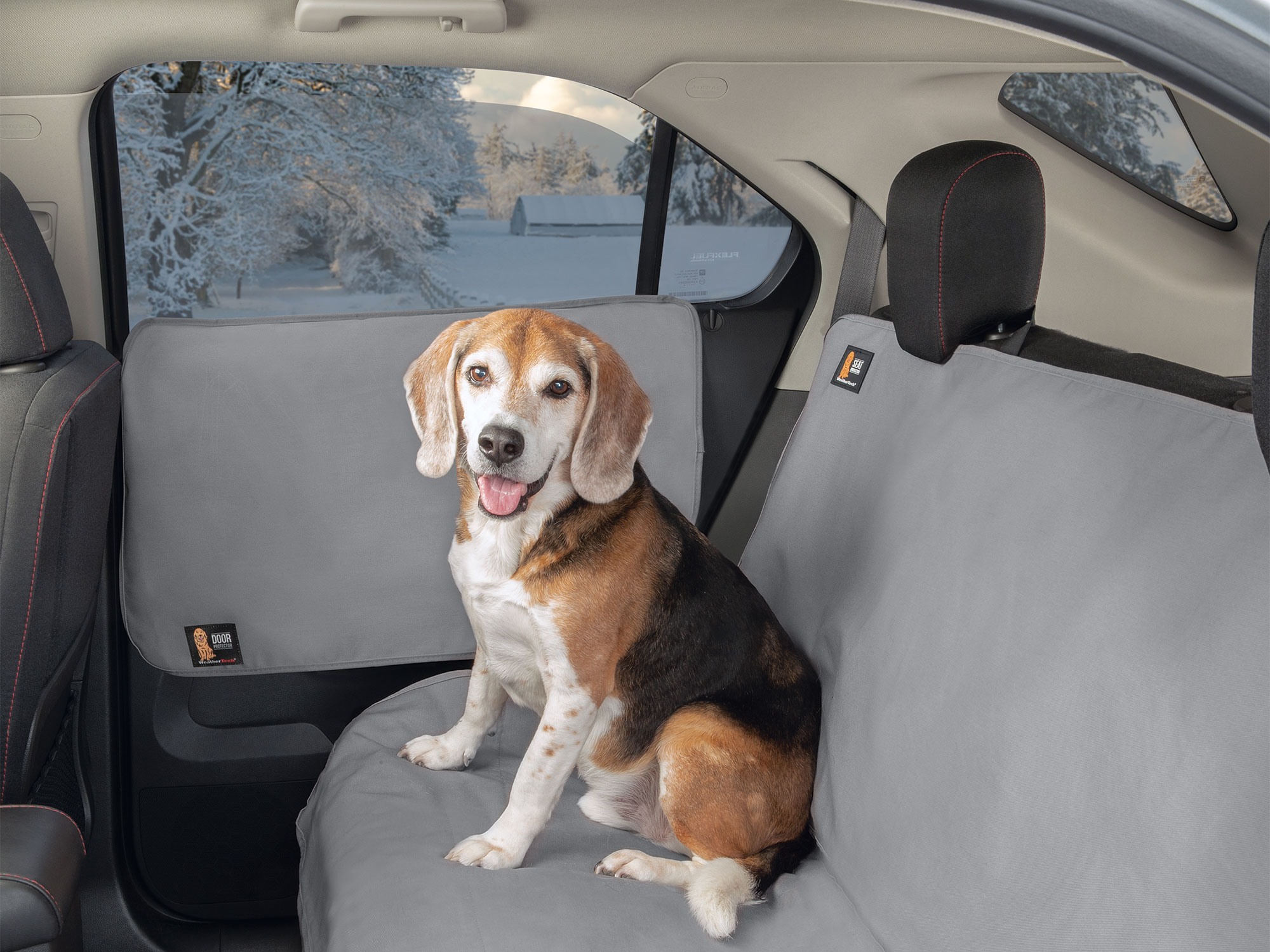 Dog sitting in back seat on Seat Protector
