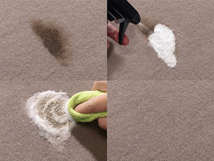 TechCare Carpet Cleaner with SpotTech