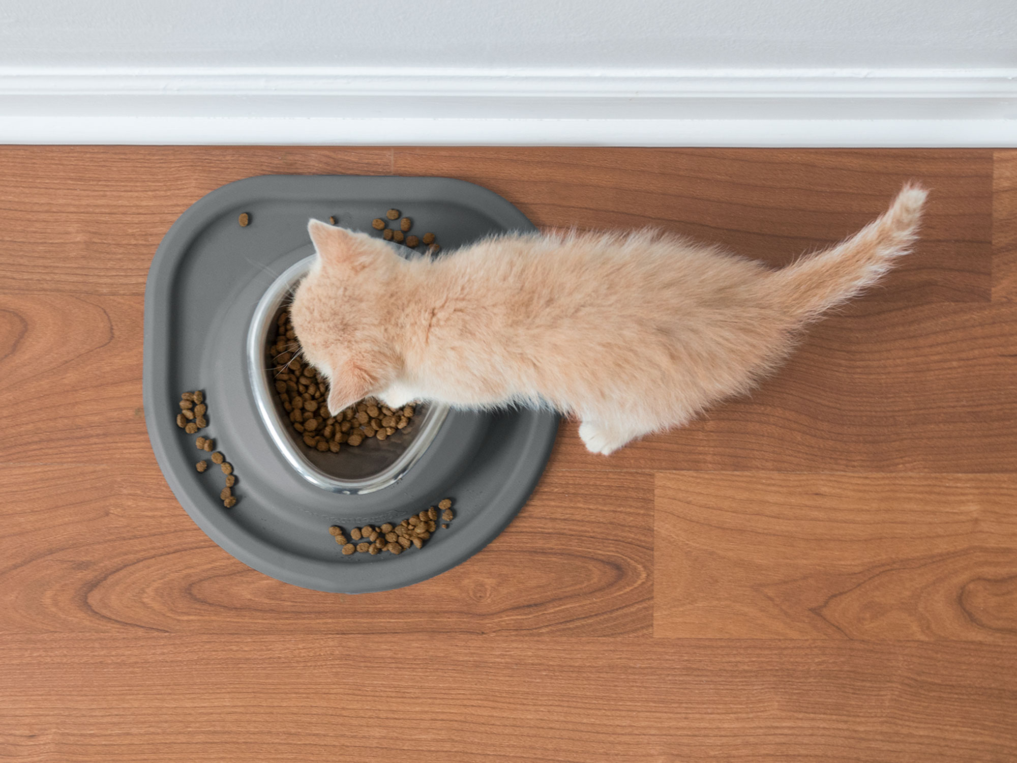 Perfect for cats! Smaller sizes work perfect as cat bowls.