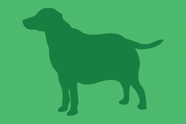 Illustrated silouette of an obese dog.