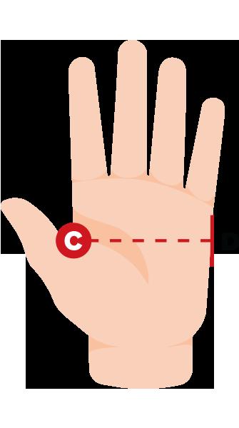 hand width