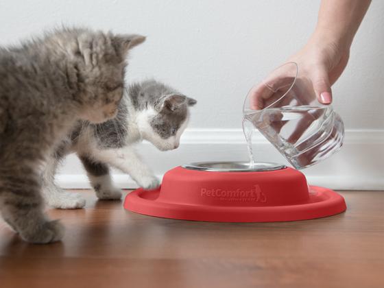 kitten_water_pour_singlebowl_red