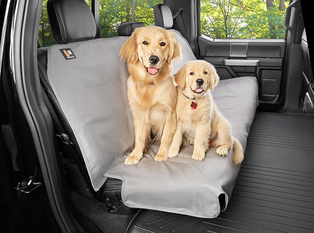 Photo of two golden retrievers sitting on a Seat Protector in the backseat of a truck
